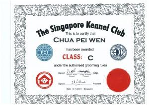 SKC C Class PeiWen