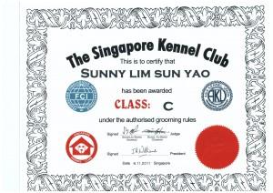 SKC C Class Sunny