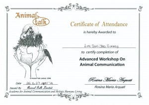 Workshop On Animal Communication Advanced Sunny