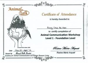 Workshop On AC Level 1 PeiWen